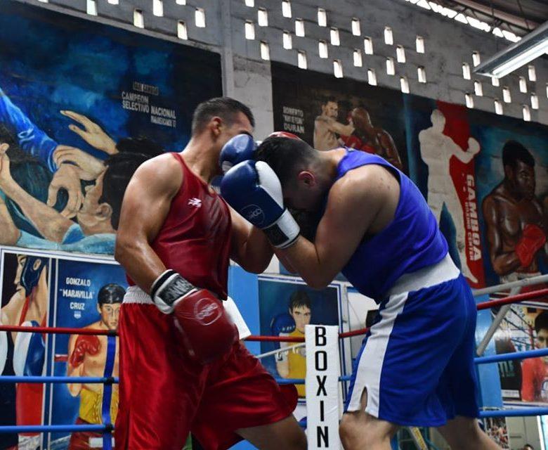 Boxeo competitivo 1