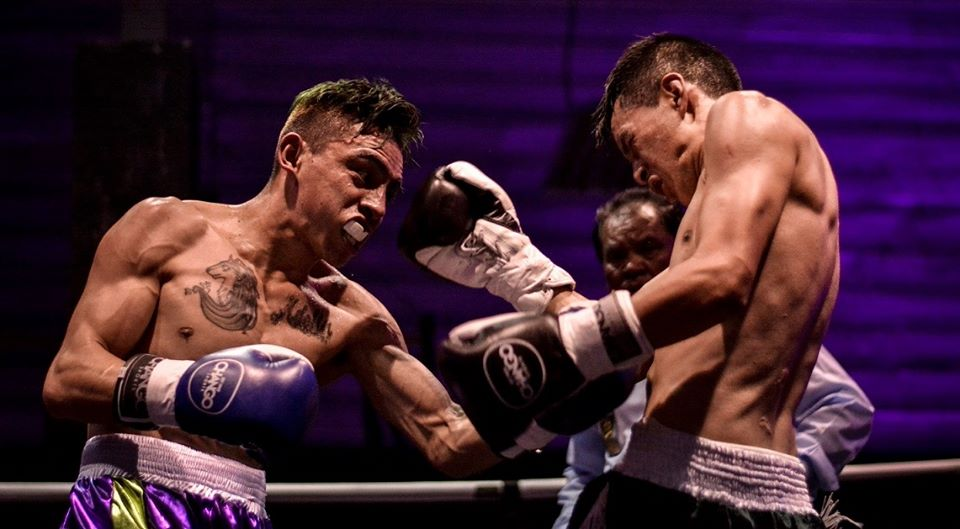 combate boxeo profesional