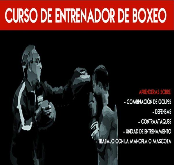 Curso Para Entrenadores De Boxeo Nivel II